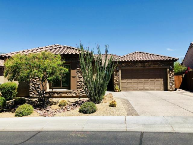 5636 E Lonesome Trail, Cave Creek, AZ 85331 (MLS #5776775) :: Arizona Best Real Estate