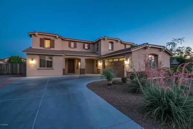 2509 E Carob Drive, Gilbert, AZ 85298 (MLS #5776824) :: Occasio Realty