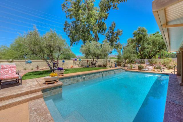 10524 E Cannon Drive, Scottsdale, AZ 85258 (MLS #5777522) :: RE/MAX Excalibur