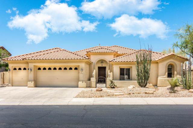 5426 E Calle Del Sol, Cave Creek, AZ 85331 (MLS #5778093) :: My Home Group
