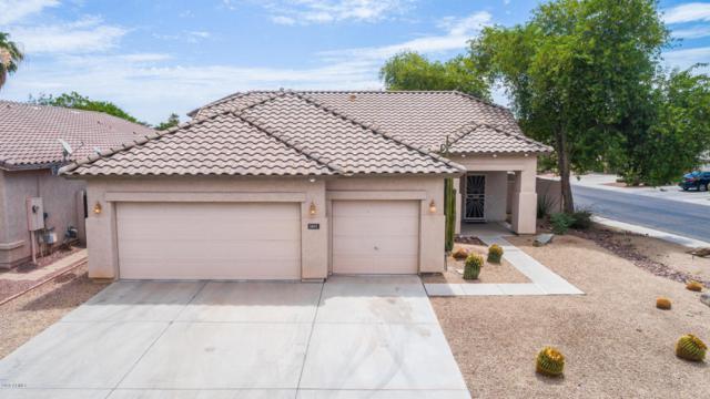 3601 N 129TH Avenue, Avondale, AZ 85392 (MLS #5778246) :: Sibbach Team - Realty One Group
