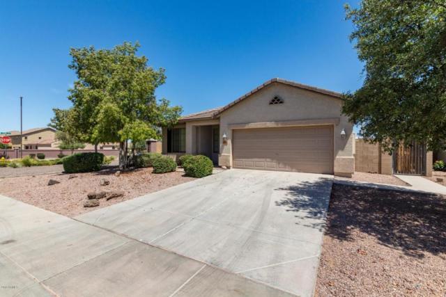 3050 E Merlot Street, Gilbert, AZ 85298 (MLS #5778269) :: My Home Group