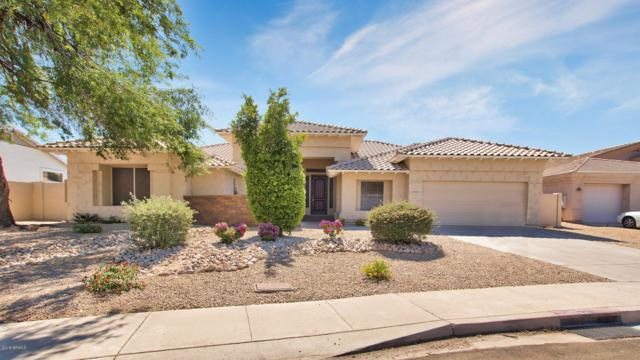 21624 N 58th Drive, Glendale, AZ 85308 (MLS #5778461) :: RE/MAX Excalibur