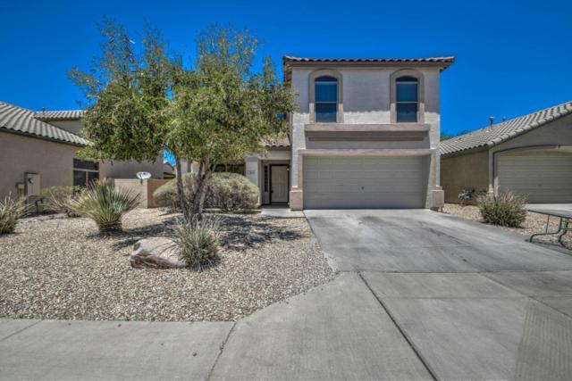 2424 W Silver Sage Lane, Phoenix, AZ 85085 (MLS #5778689) :: Occasio Realty