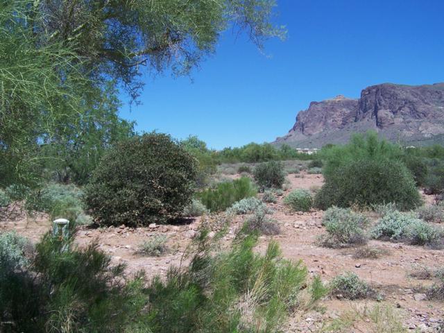 5327 E 5TH Avenue, Apache Junction, AZ 85119 (MLS #5778735) :: Riddle Realty