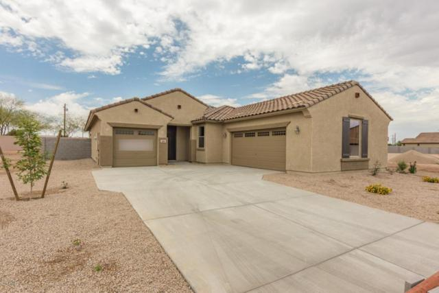 2906 S 122ND Lane, Tolleson, AZ 85353 (MLS #5778940) :: My Home Group