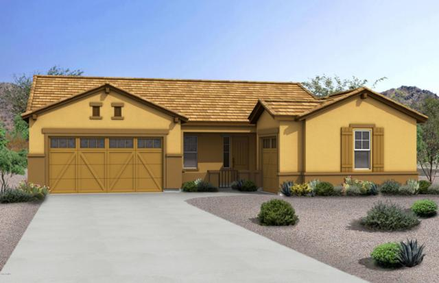 20842 E Camina Buena Vista, Queen Creek, AZ 85142 (MLS #5778990) :: The Everest Team at My Home Group