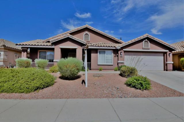 12431 N 39TH Drive, Phoenix, AZ 85029 (MLS #5779087) :: Essential Properties, Inc.