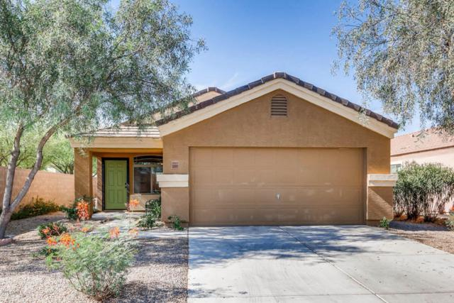 36997 W Amalfi Avenue, Maricopa, AZ 85138 (MLS #5779592) :: Lux Home Group at  Keller Williams Realty Phoenix