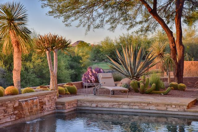 28514 N 95th Place, Scottsdale, AZ 85262 (MLS #5779681) :: The Pete Dijkstra Team