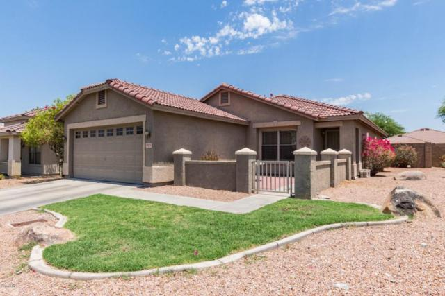 9013 S 11TH Place, Phoenix, AZ 85042 (MLS #5779826) :: Lifestyle Partners Team