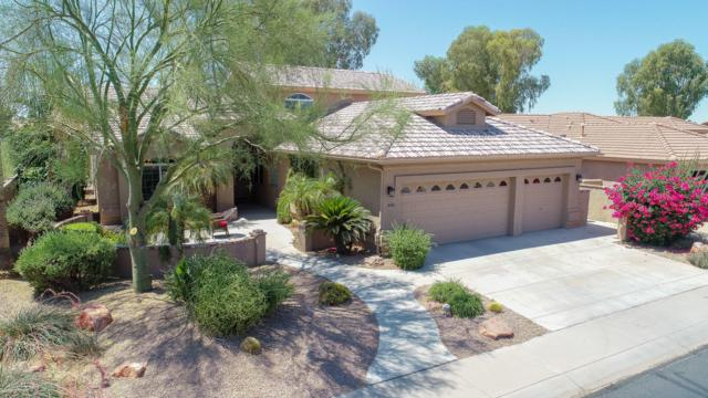441 W Cherrywood Drive, Sun Lakes, AZ 85248 (MLS #5779904) :: The W Group