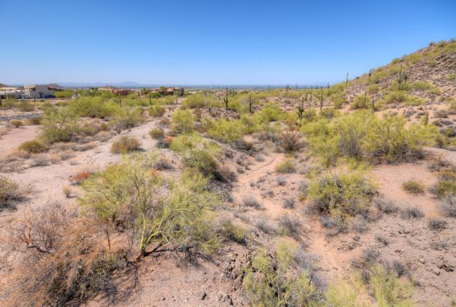 8716 E Regina Circle, Mesa, AZ 85207 (MLS #5780176) :: Riddle Realty Group - Keller Williams Arizona Realty