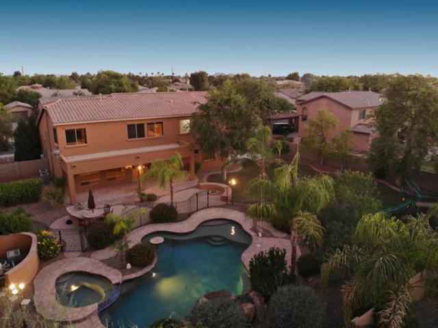 1832 E Gemini Place, Chandler, AZ 85249 (MLS #5780405) :: Essential Properties, Inc.