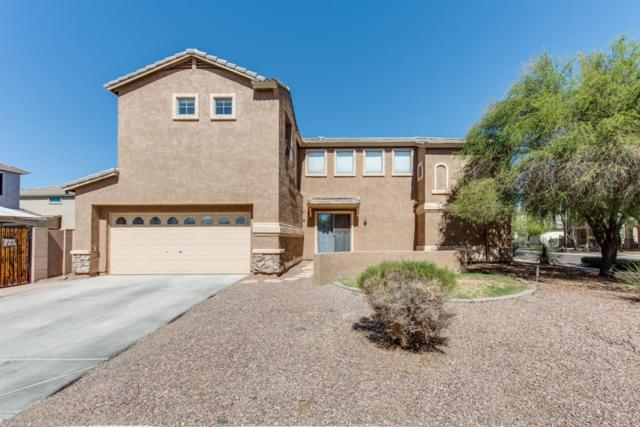 3636 E Stampede Drive, Gilbert, AZ 85297 (MLS #5780603) :: My Home Group