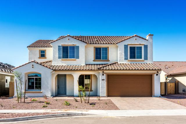 44618 N 41ST Drive, New River, AZ 85087 (MLS #5780926) :: Gilbert Arizona Realty
