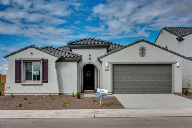 26026 W Quail Avenue, Buckeye, AZ 85396 (MLS #5780986) :: Arizona 1 Real Estate Team