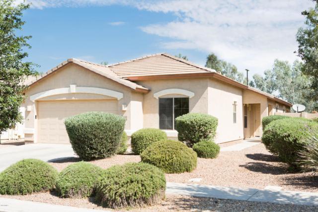 4029 S Summer Court, Gilbert, AZ 85297 (MLS #5781179) :: The Daniel Montez Real Estate Group
