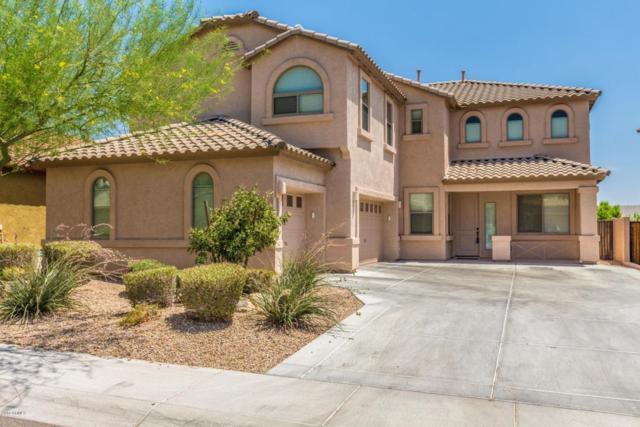 4031 E Casitas Del Rio Drive, Phoenix, AZ 85050 (MLS #5781420) :: Occasio Realty