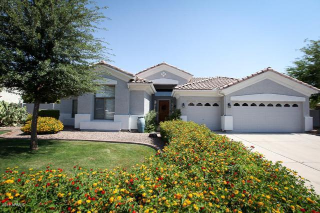 4105 E Encanto Street, Mesa, AZ 85205 (MLS #5781804) :: Occasio Realty