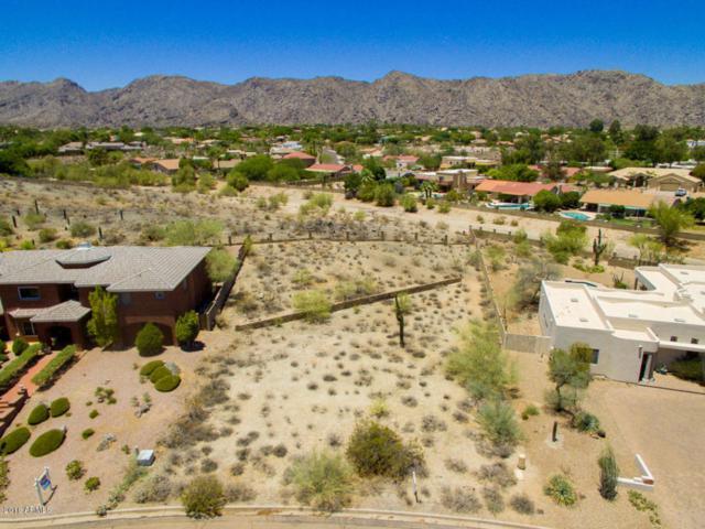 3722 E Cherokee Court, Phoenix, AZ 85044 (MLS #5782614) :: Brett Tanner Home Selling Team