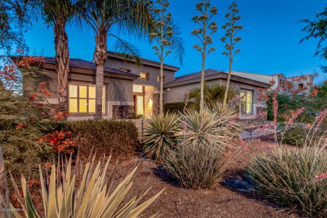 288 W Kingbird Drive, Chandler, AZ 85286 (MLS #5782692) :: Revelation Real Estate