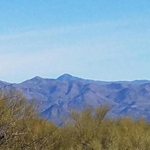 138XX E Windstone Trail, Scottsdale, AZ 85262 (MLS #5783063) :: Kepple Real Estate Group