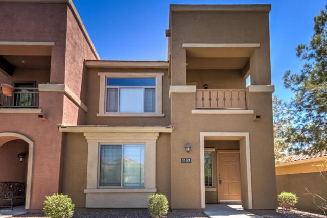 900 S 94TH Street #1193, Chandler, AZ 85224 (MLS #5783221) :: Riddle Realty