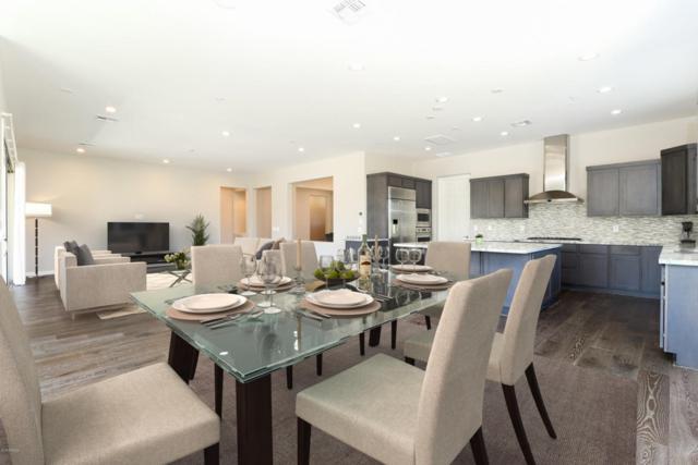 17884 E Silver Sage Lane, Rio Verde, AZ 85263 (MLS #5783589) :: Desert Home Premier