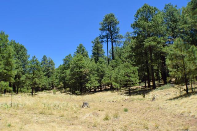 2649 State Route 260, Forest Lakes, AZ 85931 (MLS #5783746) :: The Daniel Montez Real Estate Group