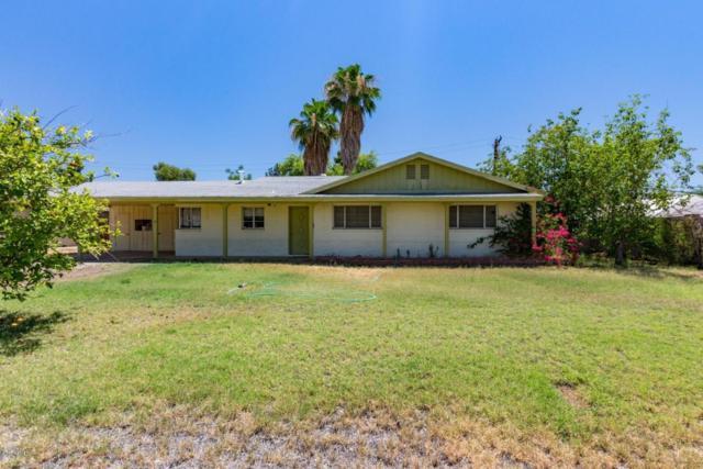 3825 N 35TH Street, Phoenix, AZ 85018 (MLS #5784110) :: My Home Group