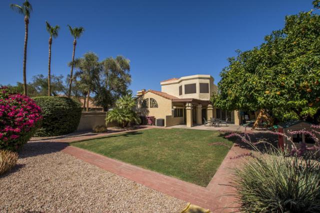 8795 E Quarterhorse Trail, Scottsdale, AZ 85258 (MLS #5784623) :: Conway Real Estate