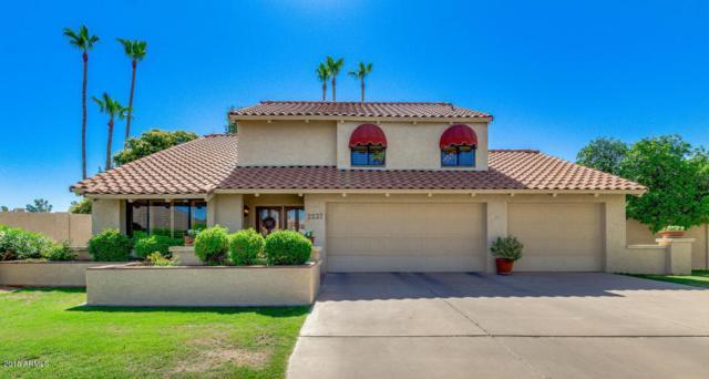 2237 S Catarina Circle, Mesa, AZ 85202 (MLS #5785185) :: Team Wilson Real Estate