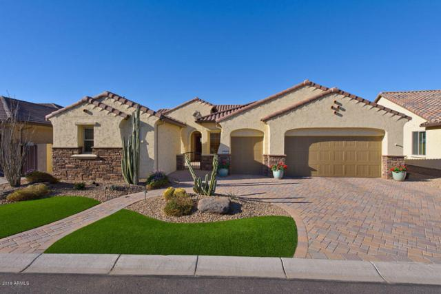 3438 N 164TH Avenue, Goodyear, AZ 85395 (MLS #5785230) :: Kortright Group - West USA Realty
