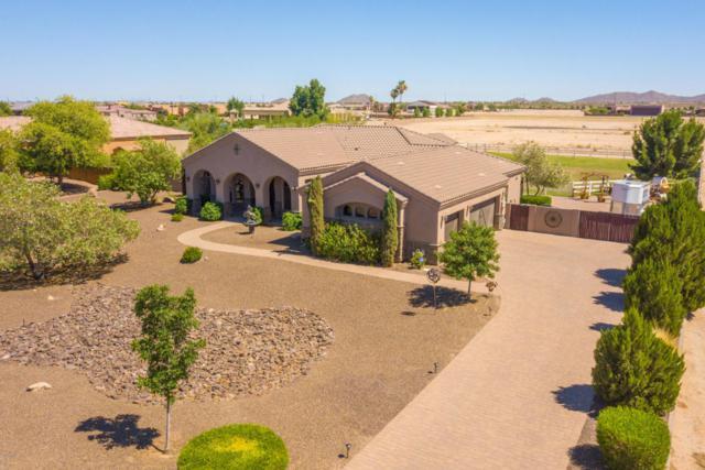 21693 E Pegasus Parkway, Queen Creek, AZ 85142 (MLS #5785494) :: CANAM Realty Group
