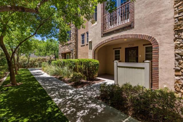 2429 E Montecito Avenue, Phoenix, AZ 85016 (MLS #5785617) :: Team Wilson Real Estate