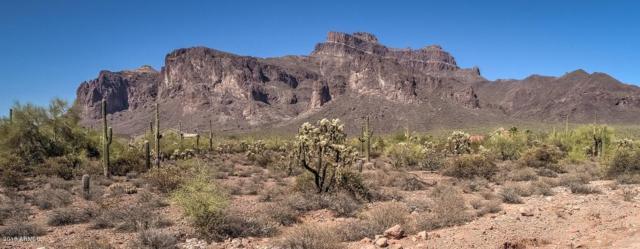 6040 E Roosevelt Street, Apache Junction, AZ 85119 (MLS #5785752) :: The Jesse Herfel Real Estate Group