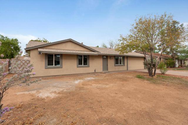 14219 N 37th Way, Phoenix, AZ 85032 (MLS #5785765) :: The Garcia Group