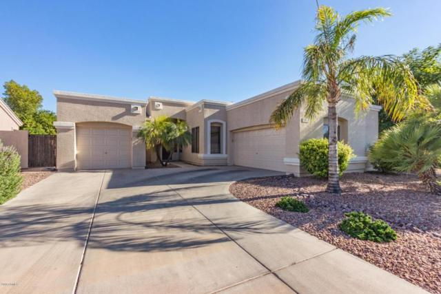 5311 W Saint John Road, Glendale, AZ 85308 (MLS #5785920) :: Yost Realty Group at RE/MAX Casa Grande