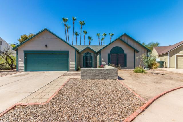 4632 E Kachina Trail, Phoenix, AZ 85044 (MLS #5785933) :: Lifestyle Partners Team
