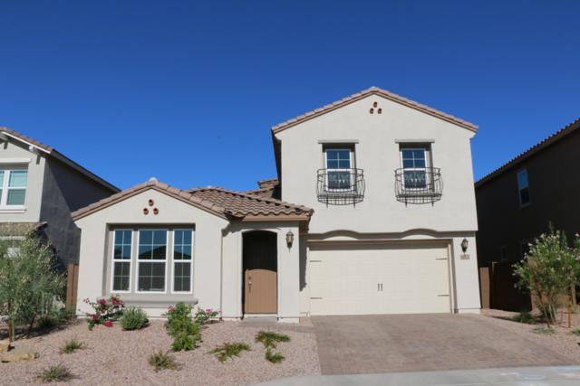 Peoria, AZ 85383 :: Arizona 1 Real Estate Team