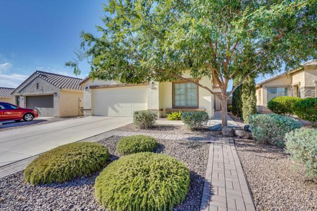 1013 W Desert Mountain Drive, San Tan Valley, AZ 85143 (MLS #5786846) :: The Everest Team at My Home Group