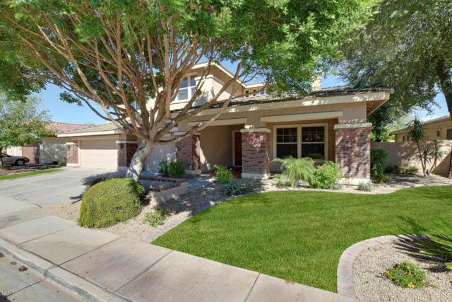 640 E Vinedo Lane, Tempe, AZ 85284 (MLS #5786993) :: The Garcia Group @ My Home Group
