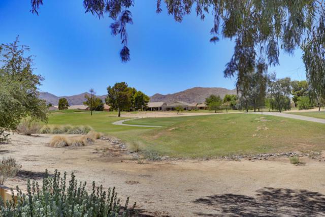 17424 N Fairway Drive, Surprise, AZ 85374 (MLS #5787830) :: Desert Home Premier