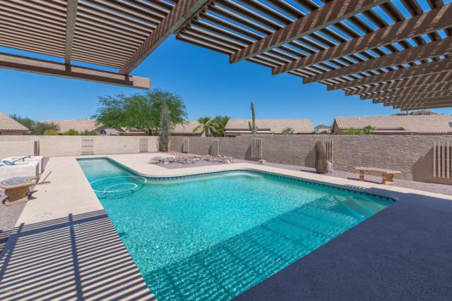 5690 S Palo Blanco Drive, Gold Canyon, AZ 85118 (MLS #5788505) :: Yost Realty Group at RE/MAX Casa Grande