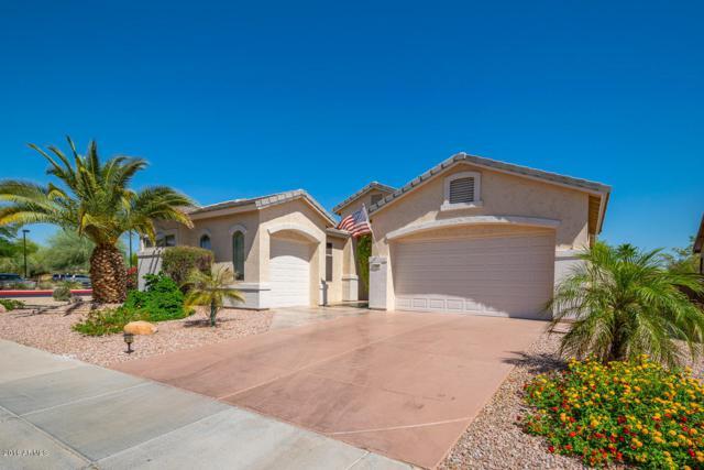 17946 W Buena Vista Drive, Surprise, AZ 85374 (MLS #5788757) :: Desert Home Premier