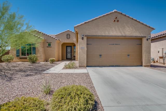 5845 E Bramble Berry Lane, Cave Creek, AZ 85331 (MLS #5788847) :: The Daniel Montez Real Estate Group