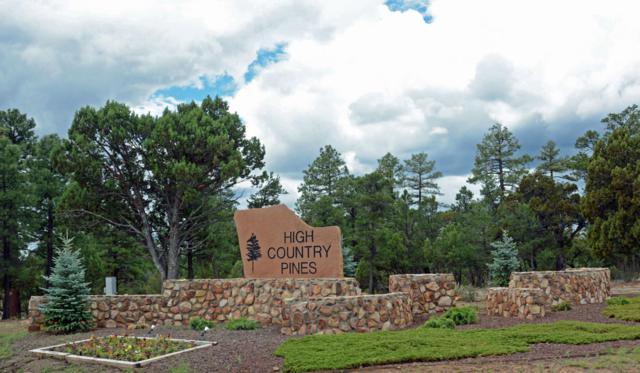 1461 Low Mountain Trail, Heber, AZ 85928 (MLS #5788899) :: Yost Realty Group at RE/MAX Casa Grande