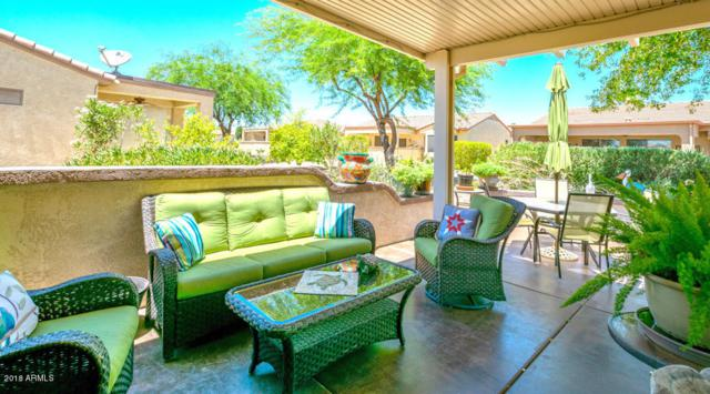 16784 W Romero Lane, Surprise, AZ 85387 (MLS #5789138) :: The Jesse Herfel Real Estate Group