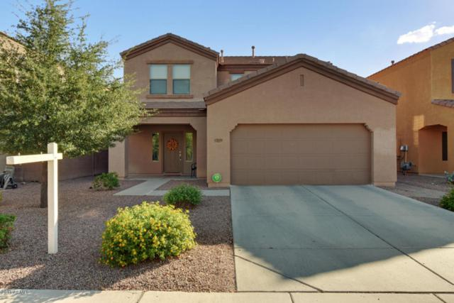 12039 W Leather Lane, Peoria, AZ 85383 (MLS #5789417) :: The Results Group